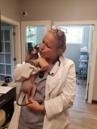 dr_carriefriedewald_veterinarian_pet_vaccines_laser-treatment_cancer_care_pain_management_kennesaw_marietta_georgia