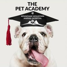 Pet-Academy-Facebook